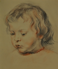 Study of Rubens`s drawing, 2017