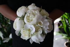 Pioni, ruusu ja orkidea