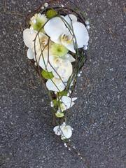 orkidea, krysanteemi koivupohjalla
