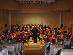 20v-juhlaorkesteri ja kuoro Suolahtisalissa 2.11.2008
