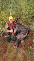 20210907_kassus_moose_bull