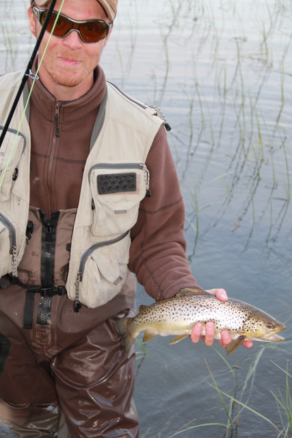 Trout fly fishing in Sweden