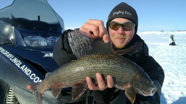 Record grayling in Norway