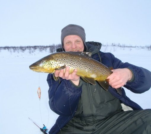 Trout fishing in Mollisjok