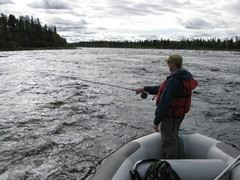 River Muonio. Fly fishing for grayling