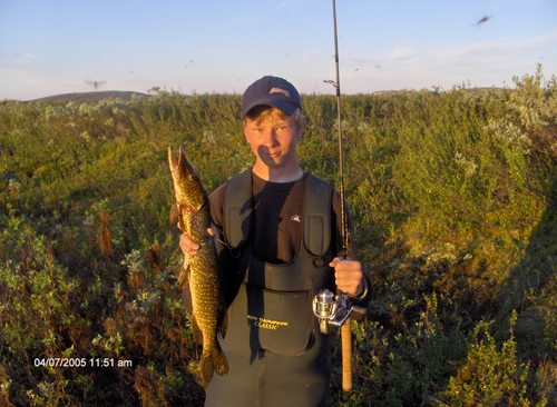 Pike_fishing_Lapland_-_pike_fishing_lakes_in_Lapland_-_pike_fly_fishing_Lapland