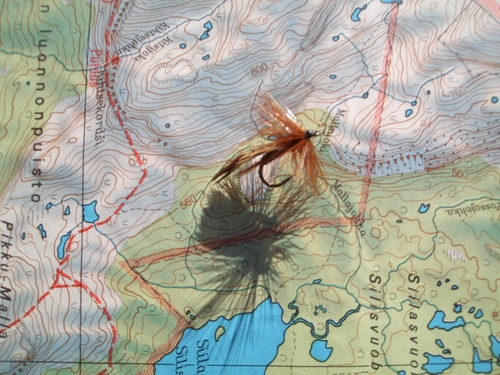 europa_12._grayling_flies_finland