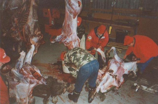 Lihanjakoa lahtiliiterissa.