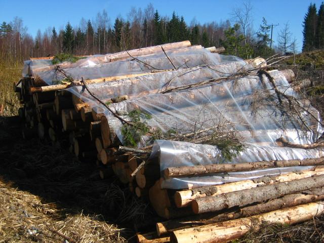 Puupinojen suojaaminen
