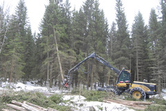 Eco Log -harvestereiden nostureissa riittää voimaa ja ulottuvuutta