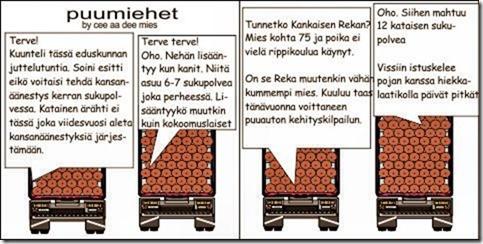 kataista_ja_kankaista