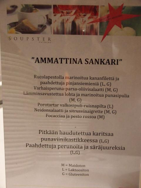 Ammattina Sankari gaala 21.11.2013 Helsinki