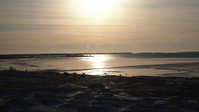 Kalajoki Hiekkasärkät 19.3.2014.- Joutsenet matkalla pohjoiseen