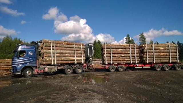 76 tonnisen yhdistelmän tukit siirtyvät 68 tonnisen siirtoauton ja perävaunun kuormaksi.
