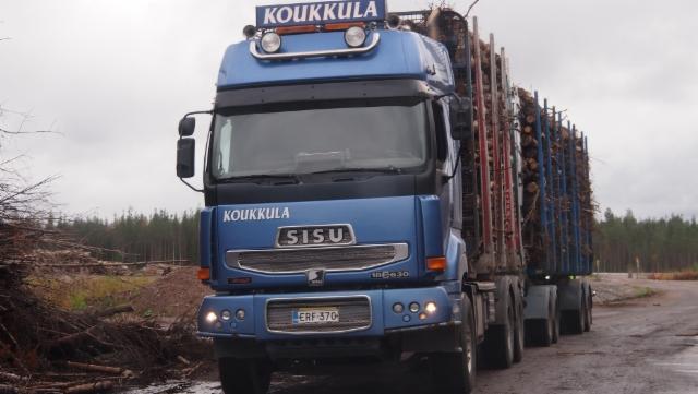 Mustikkamaan energiapuuterminaali Rovaniemi