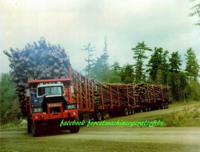 Maailmalla puu kulkee Suomeakin suuremmilla kokonaispainoilla