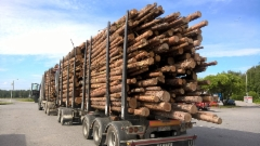 Puutavarayhdistelmän kuormatilakoko ja keveys tuovat toibotun tuloksen.