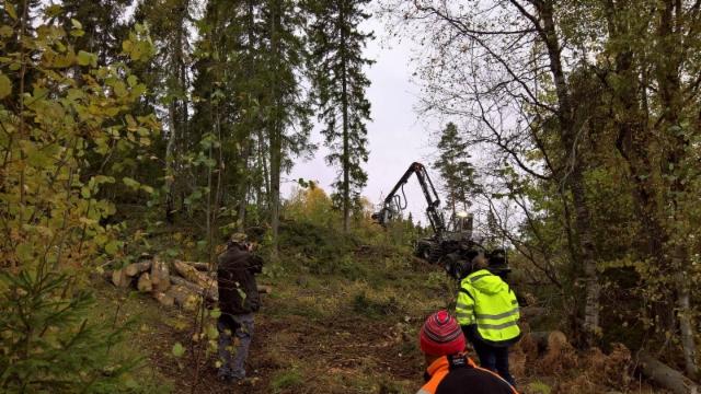 Maailman vahvin metsäkone Logset 12H GTE Hybrid ensiesittelyssä Norjassa - Vestfoldin työnäytös