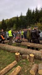 Logset 12H GTE Hybrid, Norja, Maailman vahvin metsäkone Logset 12H GTE Hybrid ensiesittelyssä Norjassa - Vestfoldin työnäytös