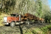 International 9300SB Logging Truck vm. 1990