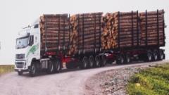Orpen 94 tonninen kasvaa.....