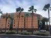 Metsäenegia- ja maarakennus ammattilaiset Anaheimissa.