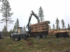 Lapissa osataan hyödyntää Logset 8F GT kuormatraktorin voimakasta moottoria ja vetovoimaa - Suomessa vähemmän käytössä oleva lisä-kärry hydrauli ohjauksella kasvattaa tuotosta.