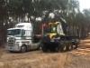 Ponsse Elephant King kuormatraktori syöttää puuta tukkiauton kyytiin Australiassa