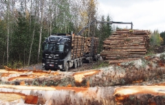Sisu Polar Timber 8x4 - Tivico Oy, Parkano