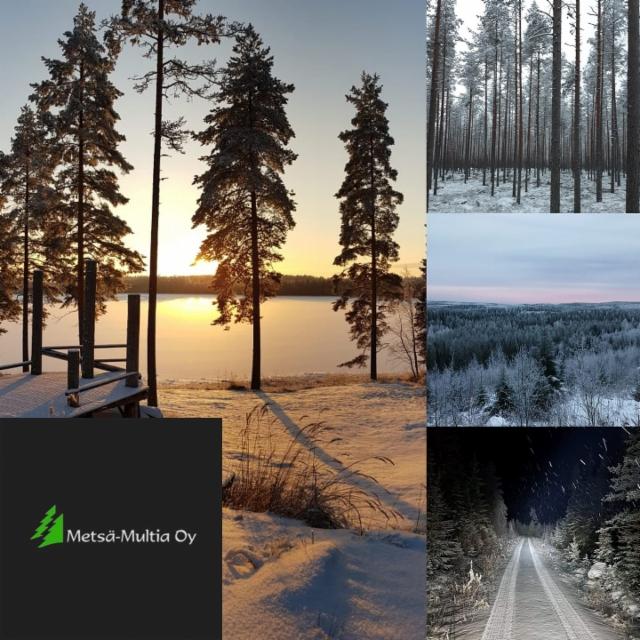 Metsä-Multia