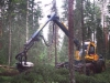 AFM 50 harvesteripää asennettuna Eco Logiin