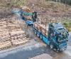 Kuljetusliike A Nieminen: Puutavaranajoa tehokkaalla ja tyylikkäällä yhdistelmällä