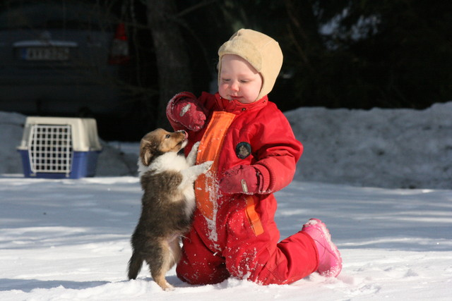 7.2.2012kameran_tyhjays_011