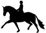 hevonen_kouluratsukko