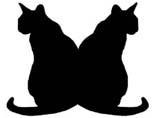 kissa_istuvat