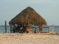 curacao 2008 sek� muita otoksia 089