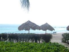 curacao 2008 sek� muita otoksia 032