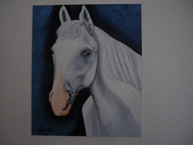 Hevonen 2010