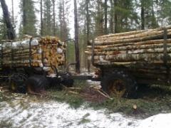 Ajetaan puuta urakalla
