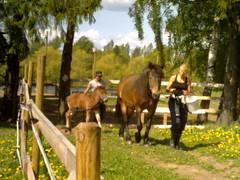 Toukokuussa 2011 Vienon kanssa