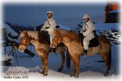 arttu_ja_jukka_talvipuvussa