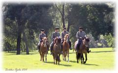 ratsastajat4