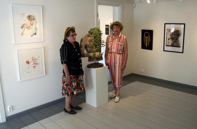 Vapaasti, Ars Novan kesänäyttely 2014, 7
