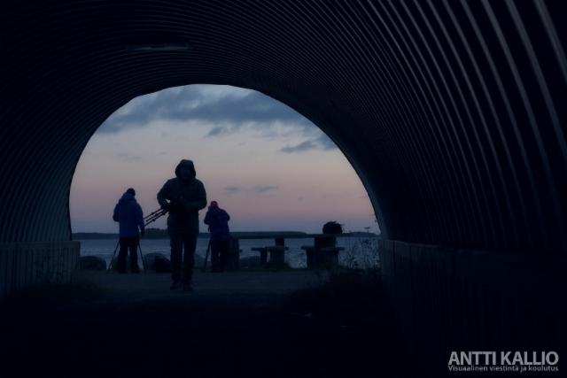 antti_kallio
