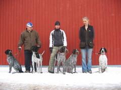 Korpilahden näyttely-08. Hertta, Emma (Avalanche),Boris,Bertta,Doris