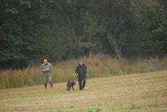 Tanska 2010