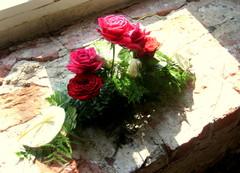 Kukka-asetelma ikkunalla