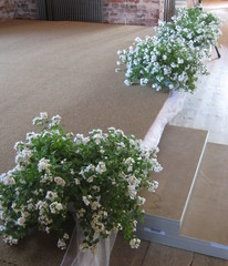 Kukat lavan reunalla
