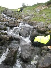 maxi sukeltaa puroon