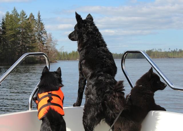 Mustat tytöt veneretkellä